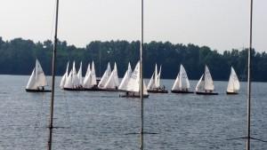 Sommerwind Schwertzugvogel RR Regatta 1,15 @ Liblarer See | Erftstadt | Nordrhein-Westfalen | Deutschland